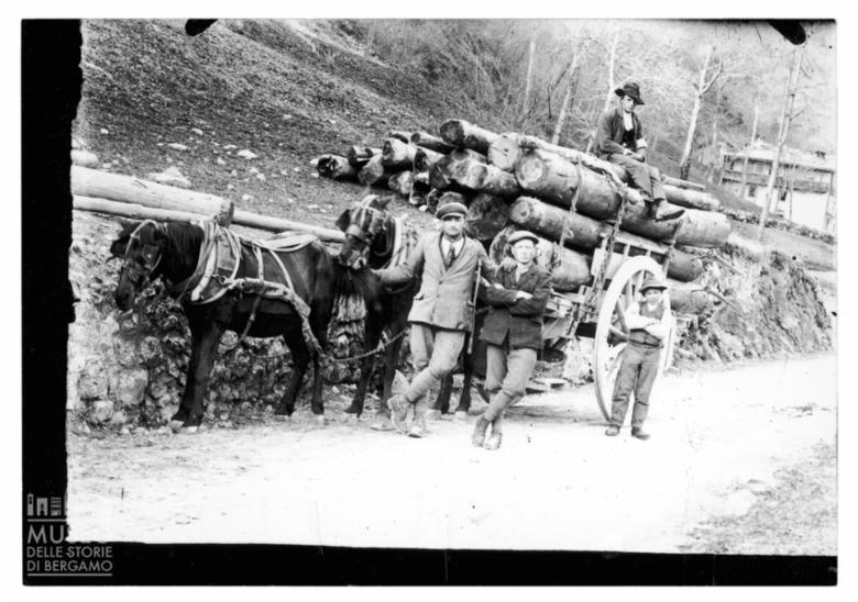 Trasporto di legname su carro