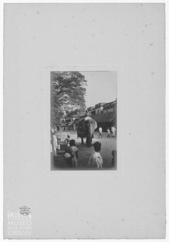 Parata di elefanti a Madurai